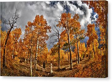 Canvas Print featuring the photograph Knights Of Pythias Autumn by Kevin Munro