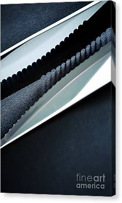 Stainless Steel Canvas Print - Knives by HD Connelly