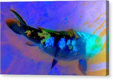 Fish Pond Canvas Print - Koi Story One A by Randall Weidner