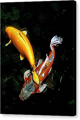 Koi Story Two E Canvas Print by Randall Weidner