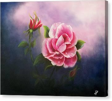Rose Canvas Print - La Bella Rosa by Joni McPherson