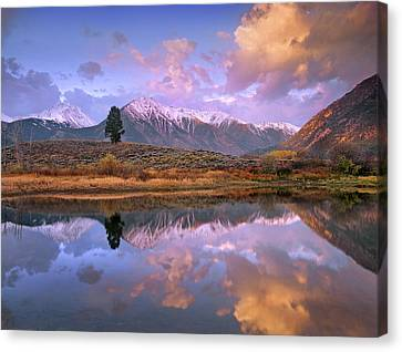 La Plata And Twin Peaks In The Sawatch Canvas Print by Tim Fitzharris