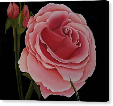 La Rosa  Canvas Print by Mary Gaines