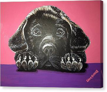 Lab Puppy Canvas Print
