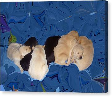 Lab Pups 1 Canvas Print by Aimee L Maher Photography and Art Visit ALMGallerydotcom