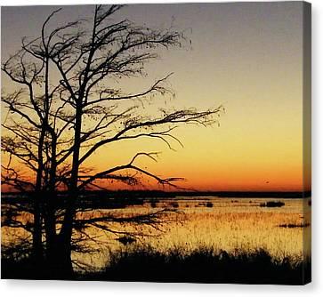 Canvas Print featuring the photograph Lacassine Sunset by Lizi Beard-Ward