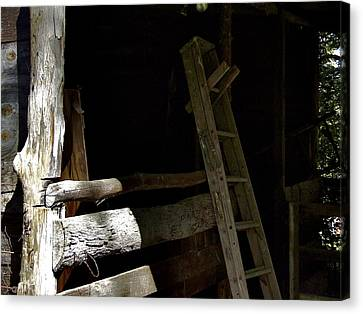 Ladder In The Shadow Canvas Print by Richard Gregurich