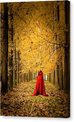 Lady In Red - 5 Canvas Print by Okan YILMAZ