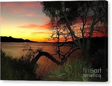 Canvas Print featuring the photograph Lake Cachuma Evening by Johanne Peale