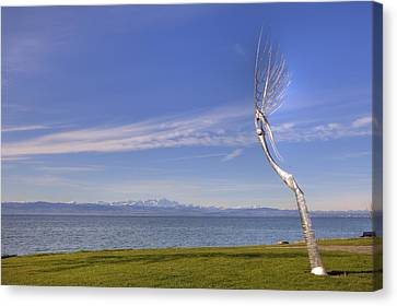 Lake Constace Friedrichshafen Canvas Print by Joana Kruse