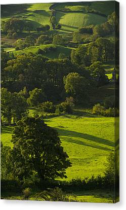 Lake District National Park, Cumbria Canvas Print by Axiom Photographic