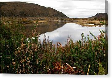 Lake In Killarney Canvas Print by Barbara Walsh
