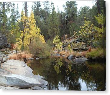 Lake In The Forest Canvas Print by Naxart Studio