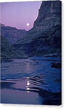 Lake Light On Colorado River,grand Canvas Print by David Edwards