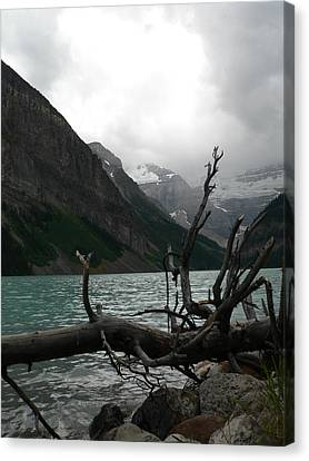 Canvas Print featuring the photograph Lake Louise by Laurel Best