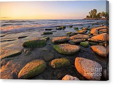 Lake Ontario Sunrise Canvas Print by Charline Xia