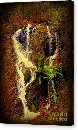 Lake Shasta Waterfall 3 Canvas Print by Garnett  Jaeger