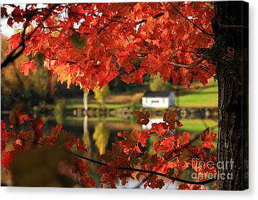 Lake Tarleton New Hampshire Canvas Print by Butch Lombardi