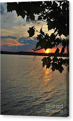 Lakeset Leaves Canvas Print by TSC Photography Timothy Cuffe Jr