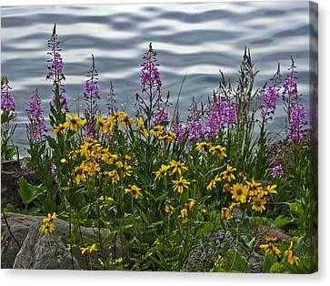 Lakeside Beauties Canvas Print