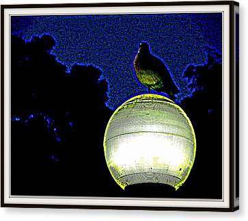 Lamp And The Bird Canvas Print by Anand Swaroop Manchiraju