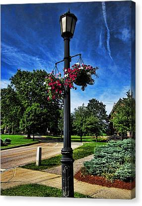 Lamp Post In The Park Canvas Print by Lourry Legarde