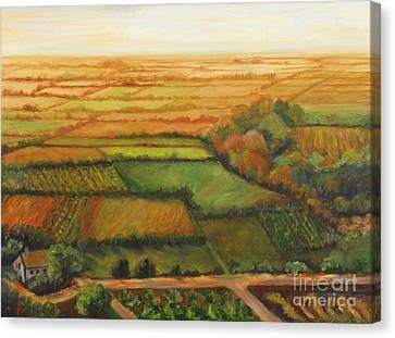 Land Lots Of Land Canvas Print