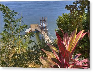 Landing In Boca Chica  Canvas Print by Heiko Koehrer-Wagner