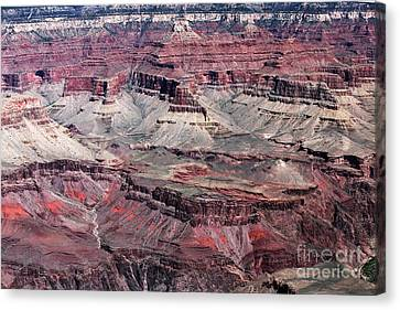 Landing In The Canyon Canvas Print by John Rizzuto