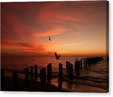Canvas Print featuring the photograph Landing Pattern by Bill Lucas