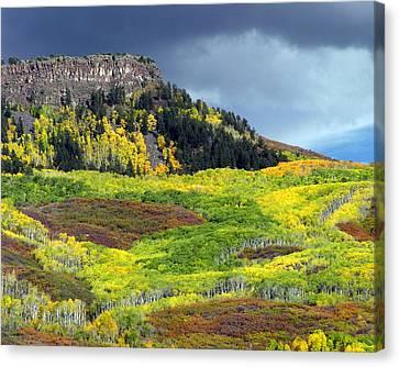 Lands End Road Vista Canvas Print