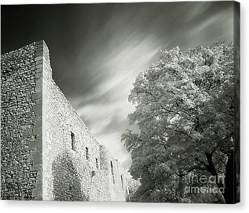 Landscape In Infra Red Canvas Print by Odon Czintos
