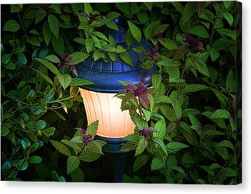Landscape Lighting Canvas Print