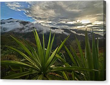 Landscape Of Southern Colombia. Department Of Narino. Canvas Print by Eric Bauer