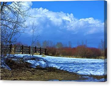 Landscape  Snow Scene Canvas Print by Johanna Bruwer