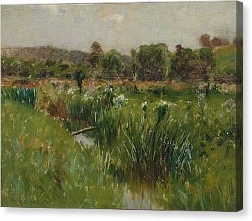 Landscape With Wild Irises Canvas Print by Bruce Crane