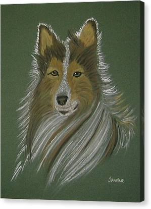 Lassie Canvas Print by Sandra Frosst