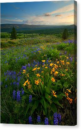 Foothills Canvas Print - Last Light Over The Wenas by Mike  Dawson