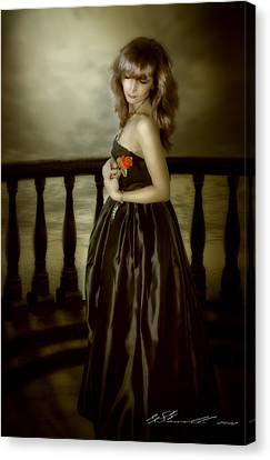 Last Red Rose Canvas Print by Svetlana Sewell