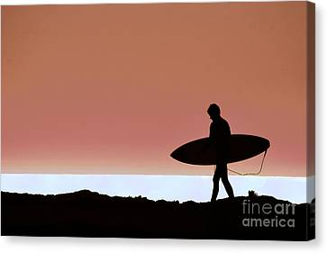 Last Wave Canvas Print by David Taylor