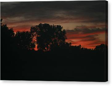 Late Evening Skies Canvas Print