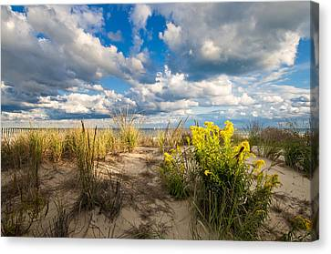 Canvas Print featuring the photograph Late Summer Dunes Ocean City by Jim Moore
