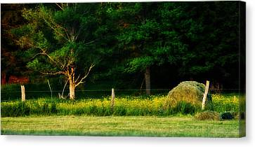 Late Summer's Eve Canvas Print by Mary Frances