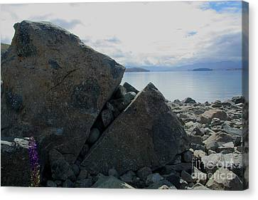 Canvas Print featuring the photograph Laughing Rock On Lake Tekapo Foreshore.o by Nareeta Martin