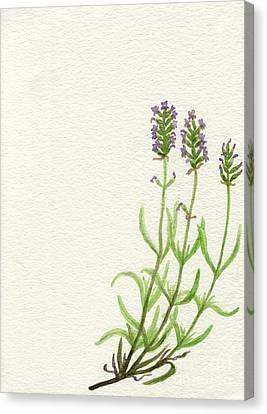 Canvas Print featuring the painting Lavender by Annemeet Hasidi- van der Leij