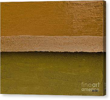Layer After Layer Canvas Print by Marsha Heiken