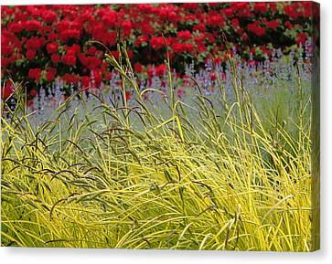 Layered Canvas Print by Lynn Wohlers