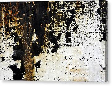 Layers Canvas Print by Lynn Wohlers