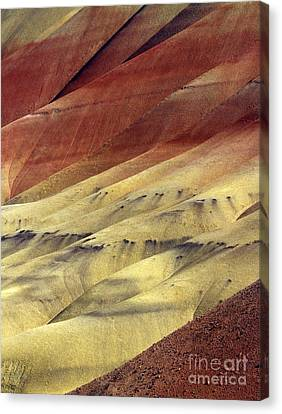 Layers Of Red Canvas Print by Mike  Dawson