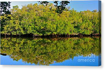 Canvas Print featuring the photograph Lazy Reflections by Joan McArthur